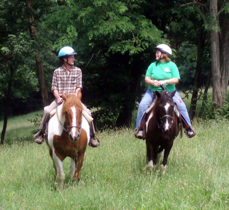Ride the healthy happy horses at First Farm Inn in a two-hour lesson.