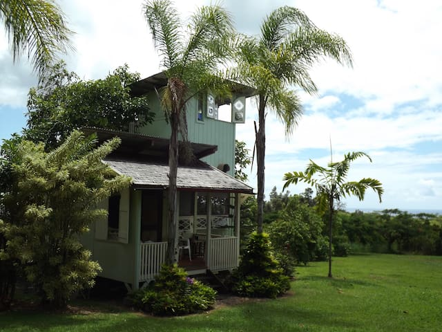 Avocado Tree-House near Pahoa - Pāhoa - Rumah