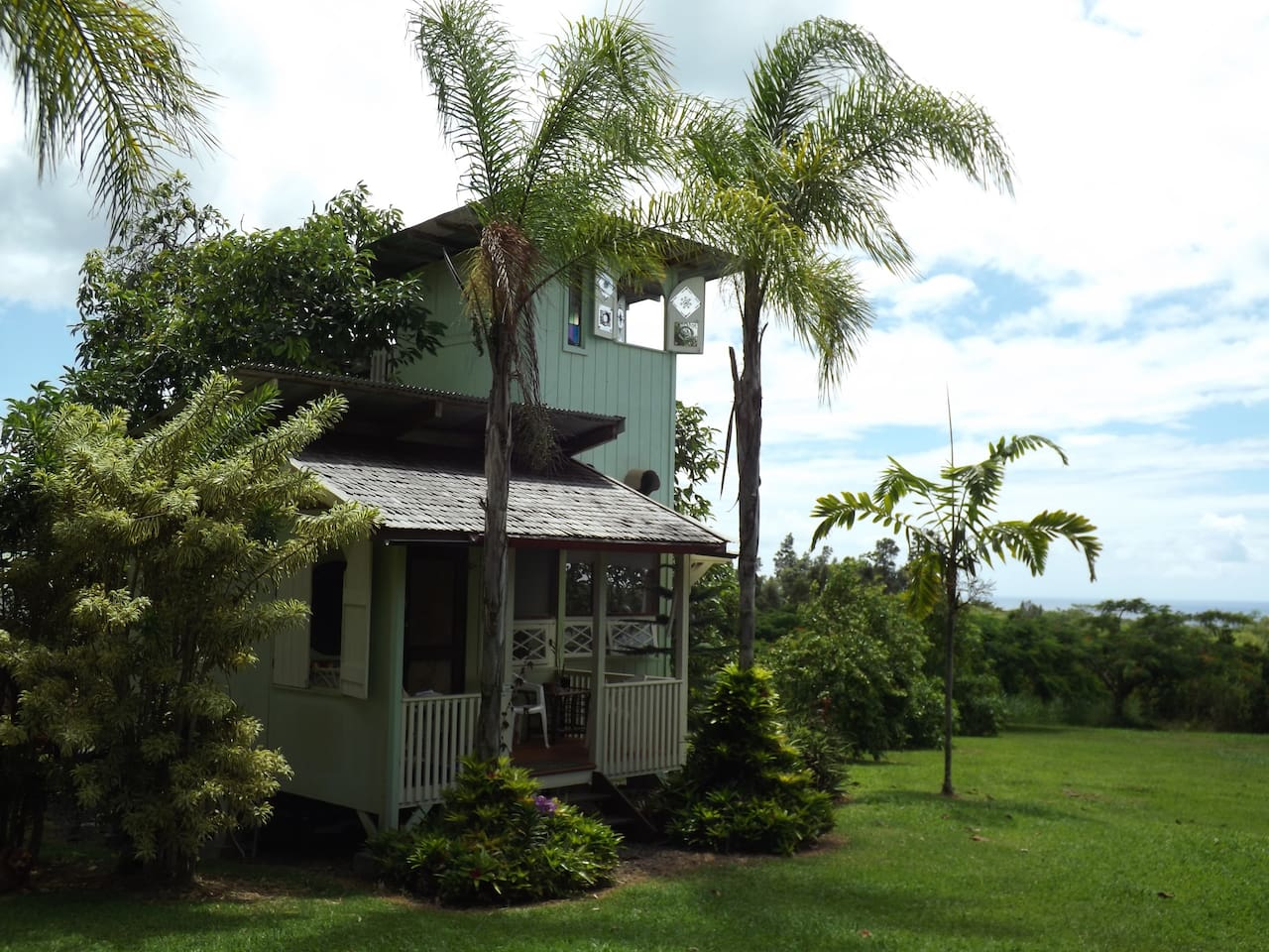 The Avocado Tree House is surrounded by palms and fruit trees with the ocean on the horizon.