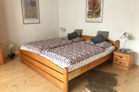 1 Zimmer Appartment mit separatem Bad