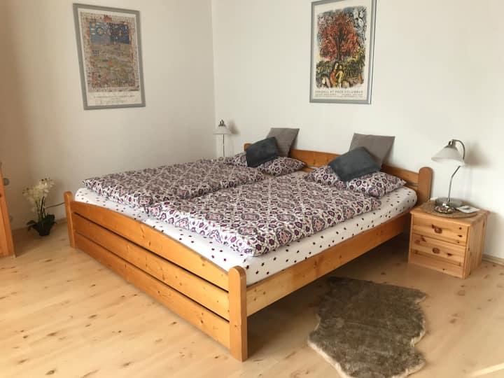 1 Zimmer Appartment mit separatem Bad