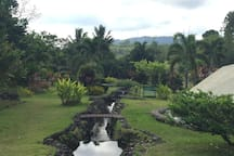 Riverside garden with Samat backdrop