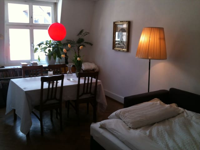 Cosy, quiet room close to Messe  - Basel - Apartmen