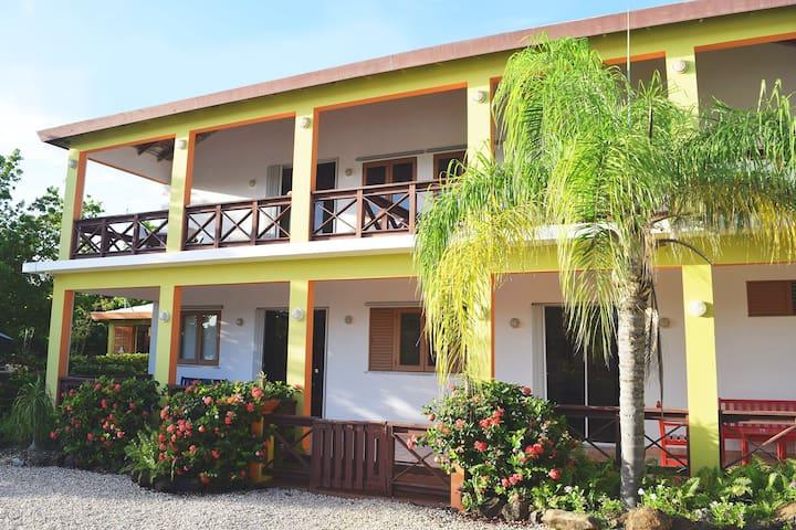 Hostal Casa Culebra - on the bay! - Culebra - Villa