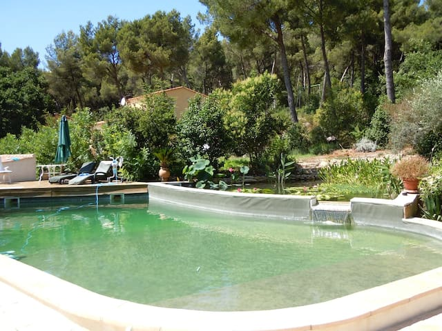 3* flat in villa, beautiful pool , 20 mins Cassis.