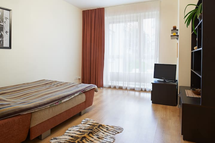 One room apartment in Vilnius - Vilnius - Daire