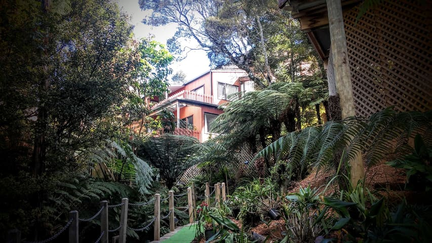 Fern Grove Apartment - Unit 91 Club Paihia - Paihia - Apartment