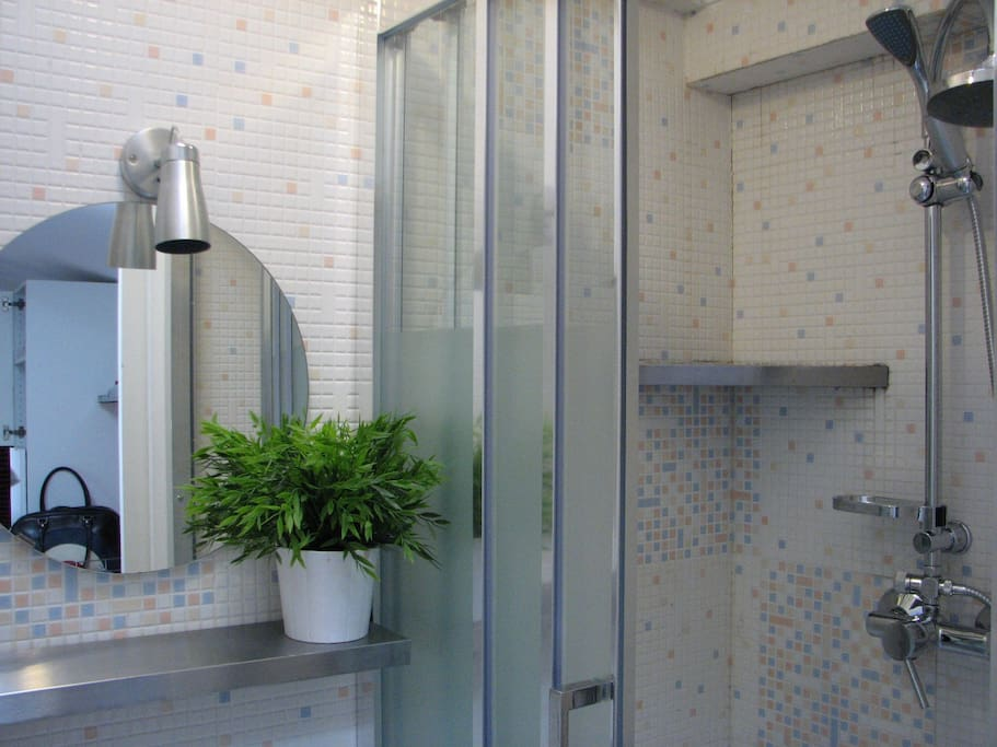 Bathroom (Shower area)