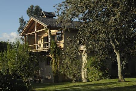 HABITAT III La Casa del Tilo Chambres d'Hotes - Quito - Bed & Breakfast