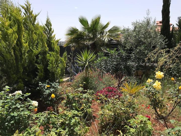 Garden Retreat in Ramallah