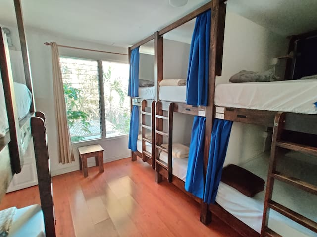 Deluxe Bed in 8-Bed Dorm with Ensuite Bathroom