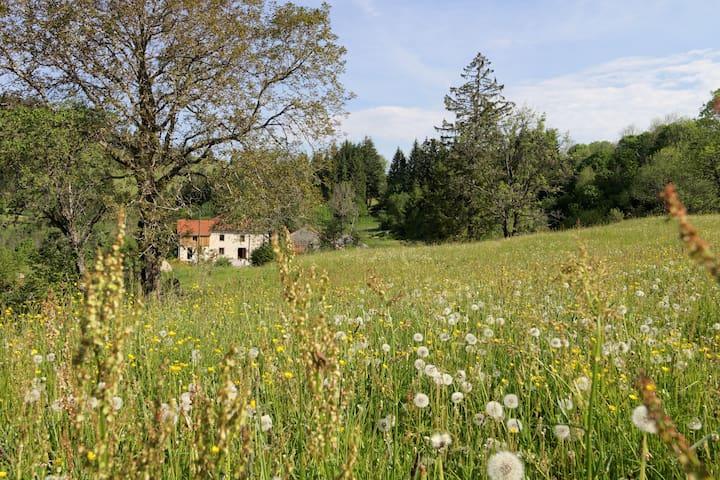 Chambre d'hôtes Bois et Nature