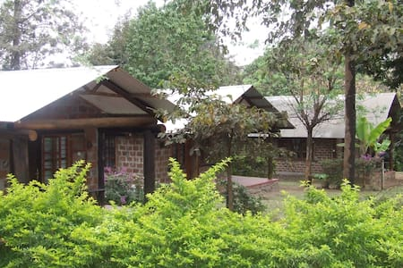 The Watering Hole - Kilimanjaro - Moshi - Bed & Breakfast