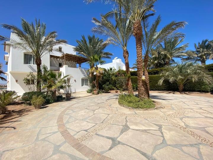Jeeran - White Villas 3 BD w Pool - Phase V