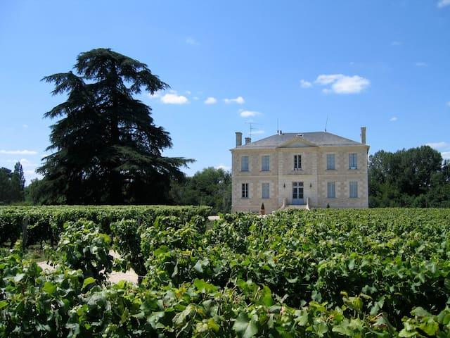 Castle in Sauternais