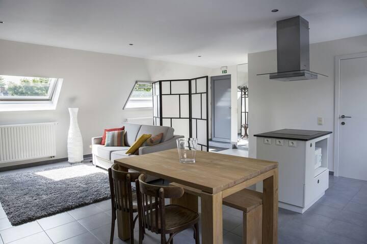 Cosy studio with bathroom and kitchen
