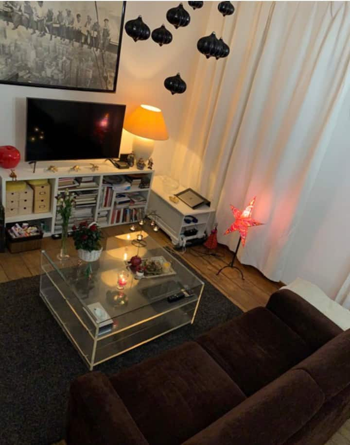 Beautiful apartment in the city center.
