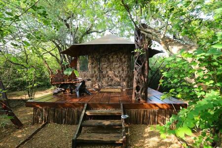 Honeymoon Tent Single