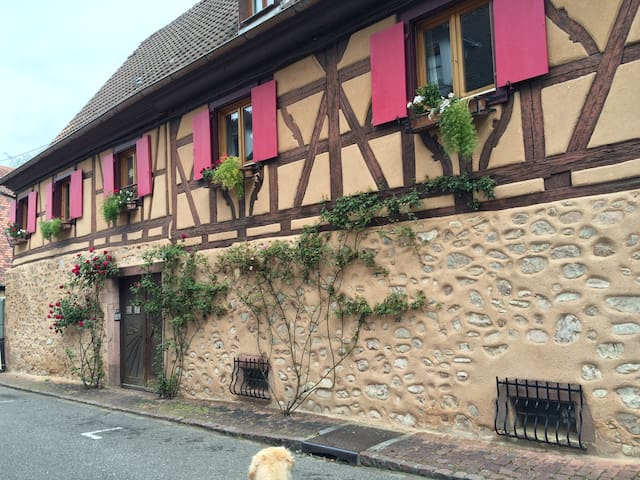 Lovely, comfy room in 300 year old Alsatian house - Turckheim - Bed & Breakfast