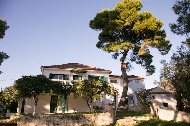 Villa eleni familly house - ΧΩΡΙΟ - Villa
