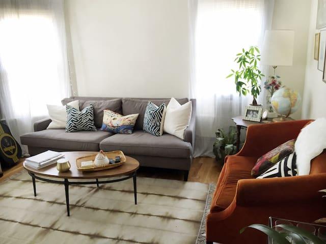 Mid-Century Hip Apartment Davis Sq