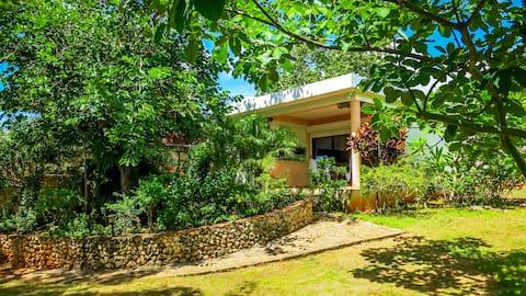 Amor Caribbean Bungalow Garden View