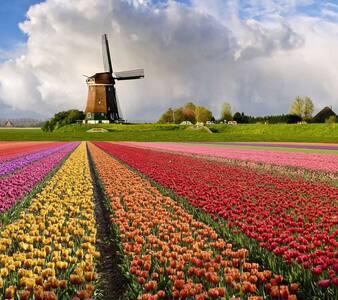 Haarlem, 2 bedrooms for 4 people, nearby Amsterdam - Haarlem - Rumah