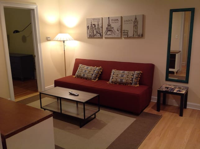 Fully furnished apt in downtown Evanston - Evanston - Lakás