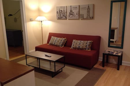 Fully furnished apt in downtown Evanston - Evanston - Departamento