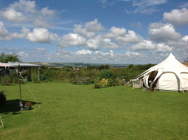 Daisy Tent ideal for Couples