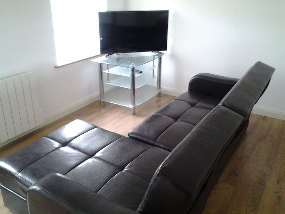 Modern living area with bed sofa.