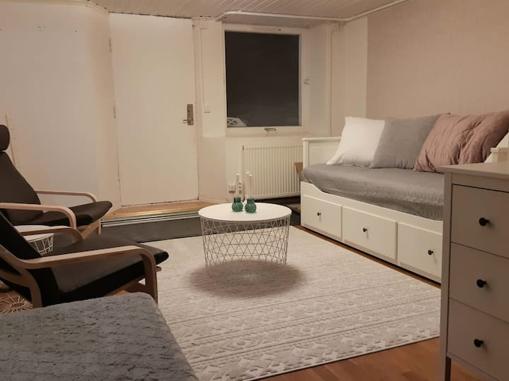 Nice accommodation in own apartment near the city