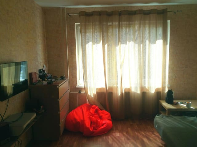 Уютная однокомнатная квартира недалеко от залива