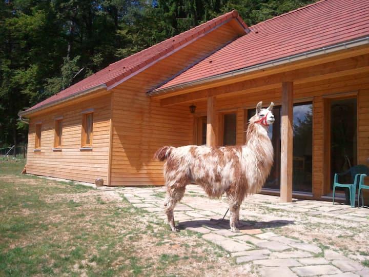 Trois chambres d'hôtes dans les Vosges