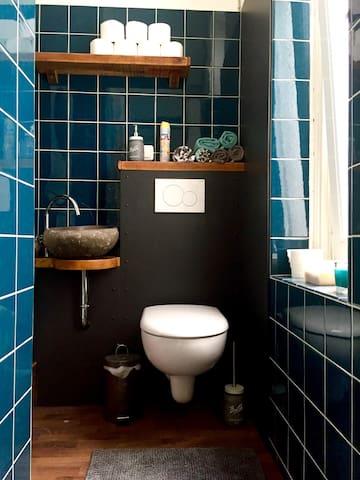 Toilet with hidden washing machine & dryer
