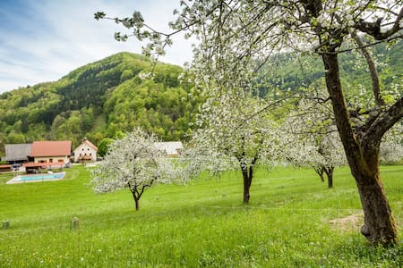 Farmstay Zelinc with swimming pool - Cerkno
