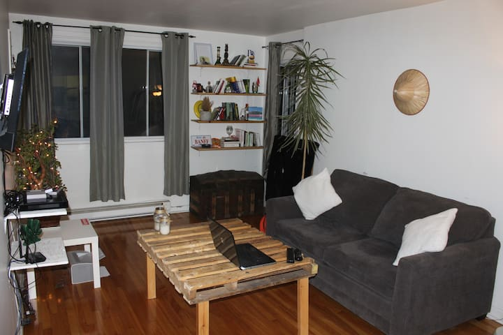 Beautiful and cheap 3 1/2 appartment in Montreal.