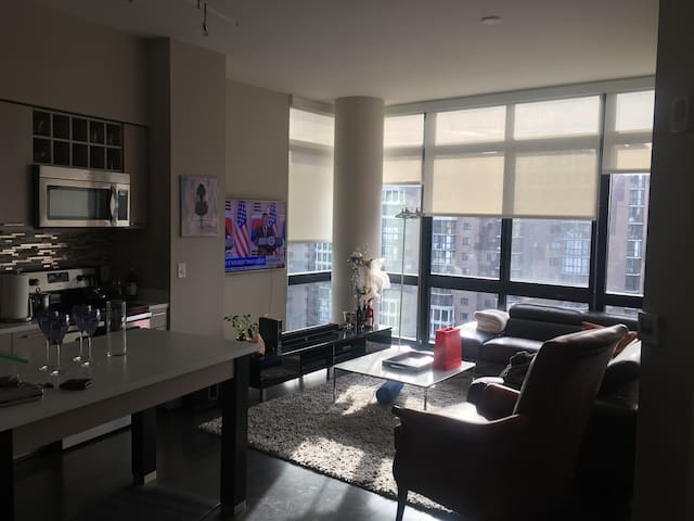 Luxury Apt Entire Unit (1 mile from Georgetown DC)