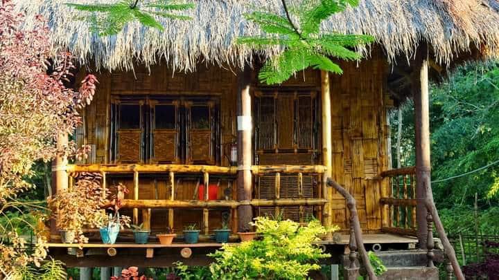 """Ayang Okum River Bank Bamboo Cottage"""