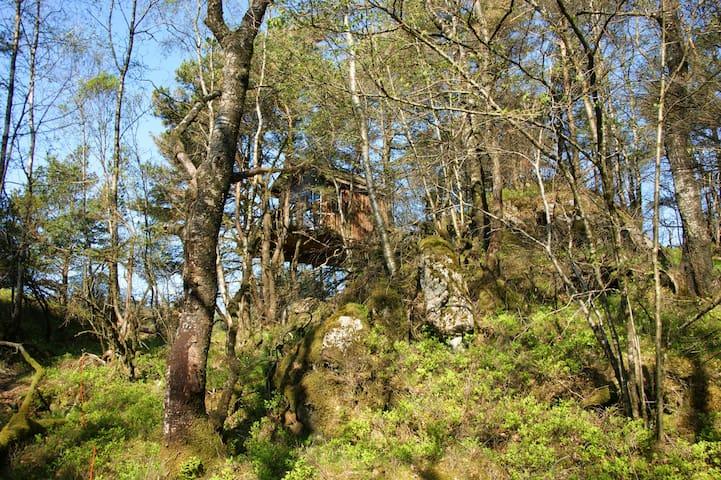 Tree house - Aksdal - Treehouse
