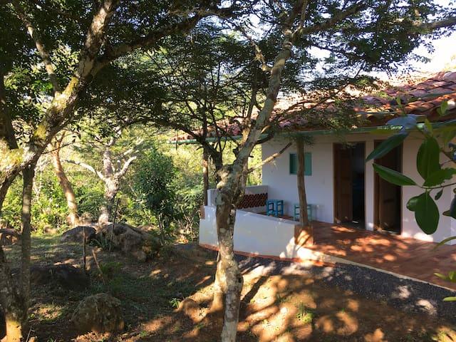Finca San Pedro, Cabaña Girasol