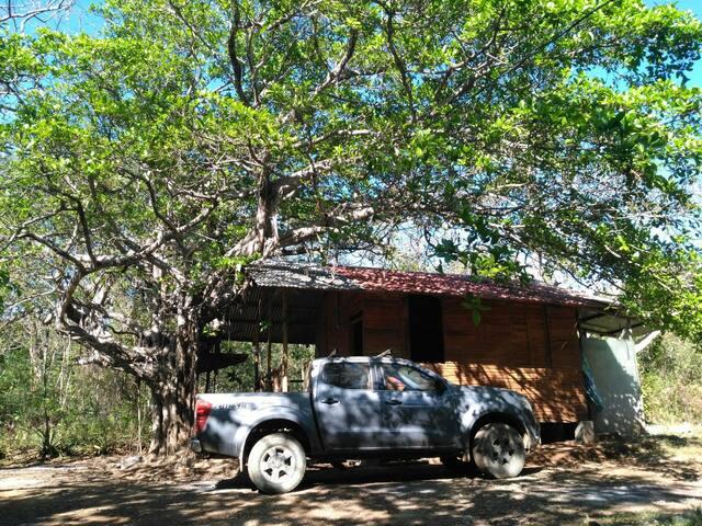Casa jungle retreat $12 p/person