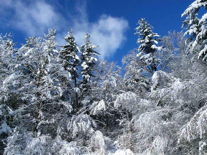 Private Berkshire Getaway Book winter months now