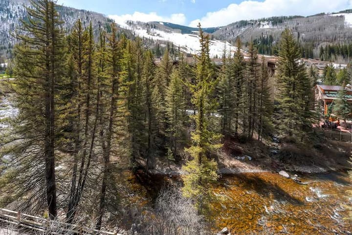 VAIL, MARCH 21-28TH, 2020 1 BD/1BR 4-5 GUESTS