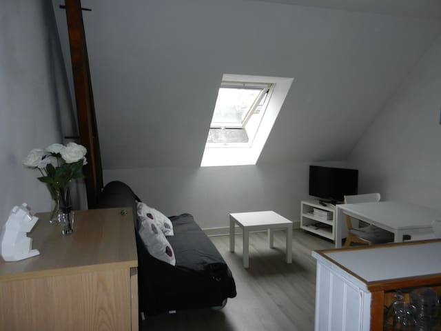 APPARTEMENT HYPER CENTRE RUE NATIONALE