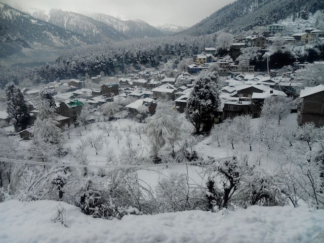 Introducing beautiful stay in Old Manali. 3