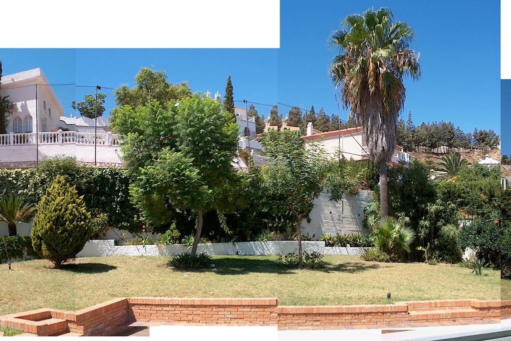 Vista panorámica del jardín.