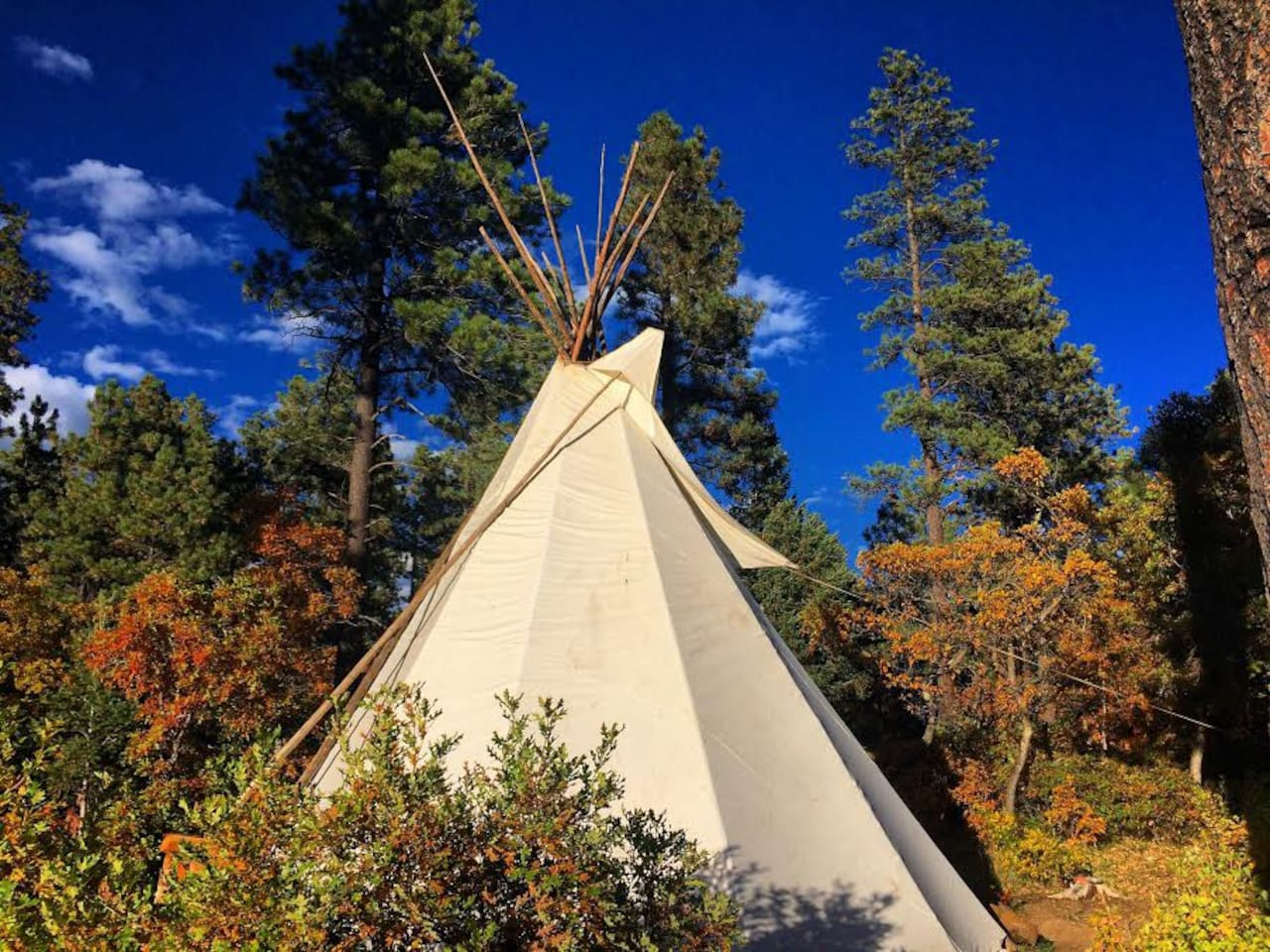 """The tipi is a serene place to stay. Of course this is considered """"Glamping"""" So the weather can impact your stay. But on cold days or nights with a central fire, you can enjoy the serenity of the circular tipi."""