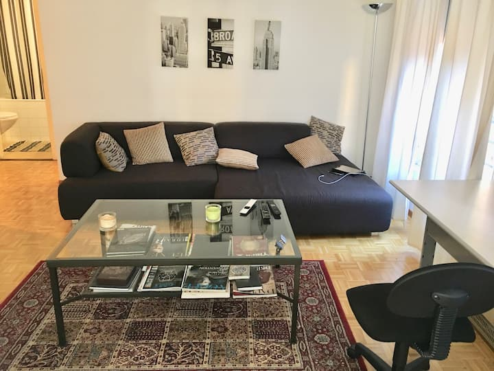 193 Great studio in Geneva city center
