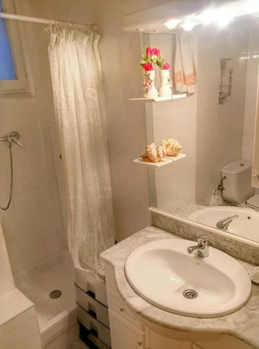 Shared bathroom with shower, toilet and bide. Shower itself is not big (70x70sm).